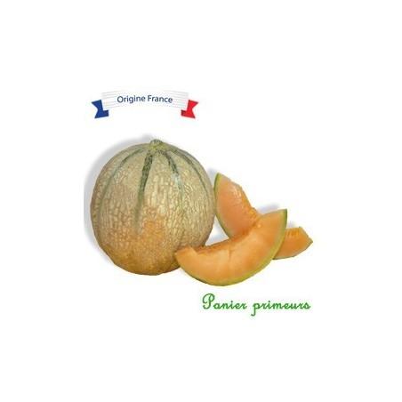 Melon Du lot et garonne (La pièce)