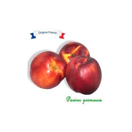 Nectarine (Le Kg)