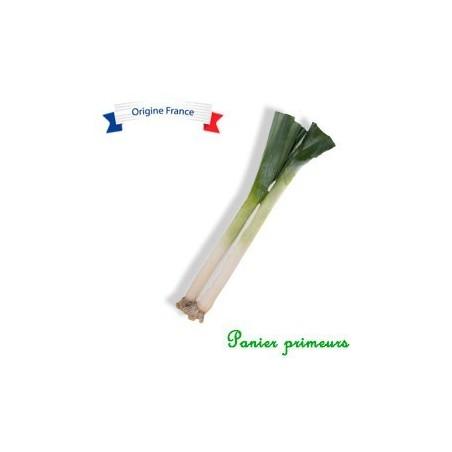 Poireaux (lot de 2)