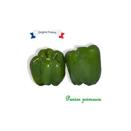 Poivron vert (le lot de 2)