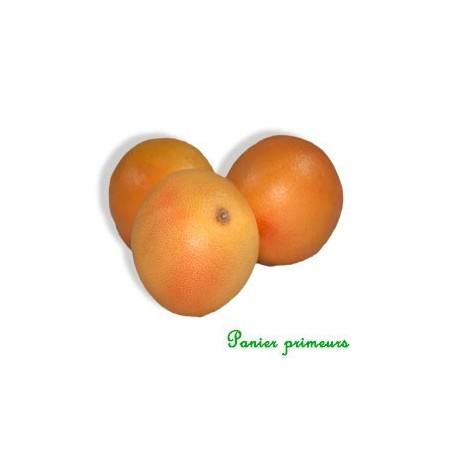 Pomelos (La Pièce)