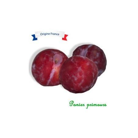 Prunes quetsche Du lot et Garonne (500g)