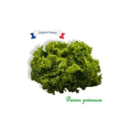 Salade Batavia Du Lot et Garonne (La Pièce)