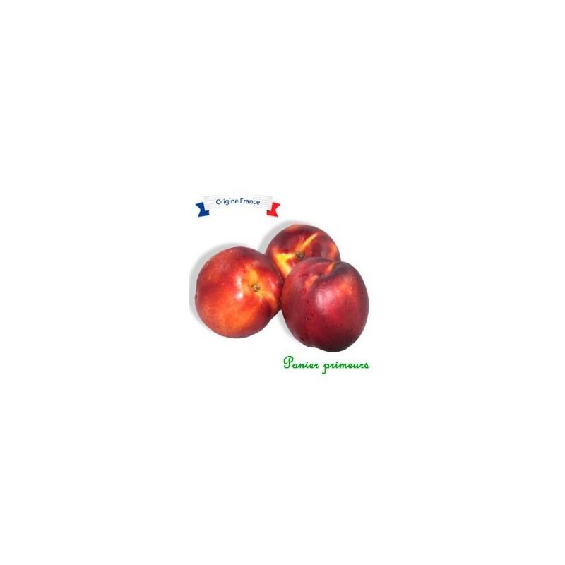 Nectarine Blanche (Le Kg)
