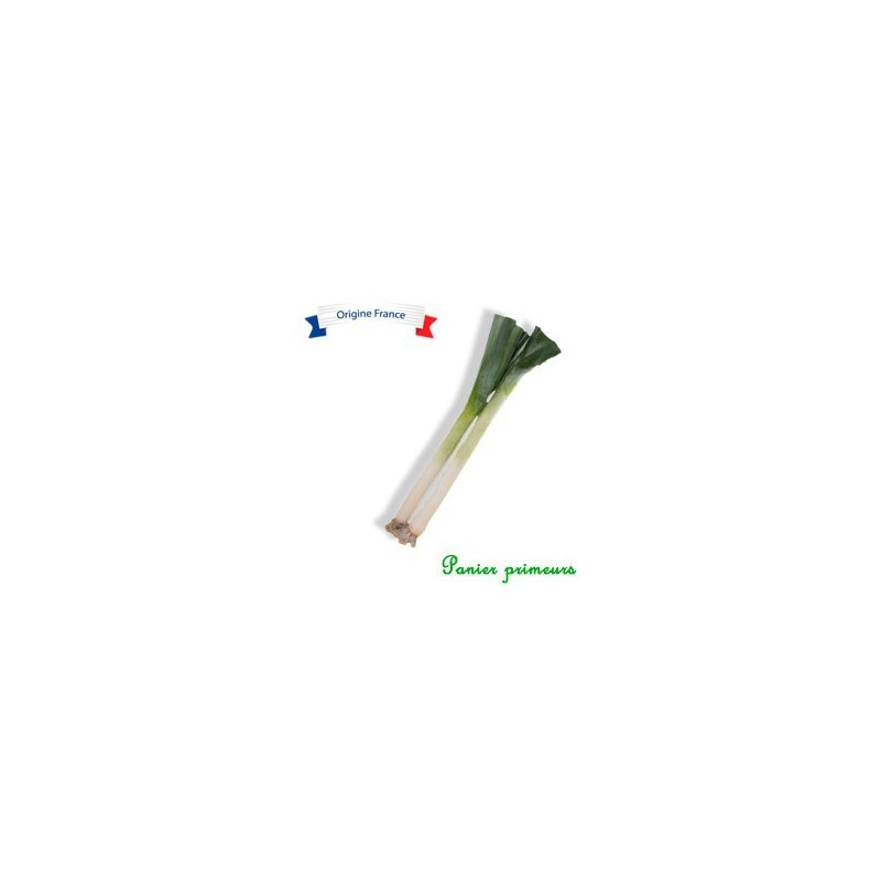 Poireaux (lot de 2 env 500g)