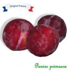 Prunes d'ente (500g)