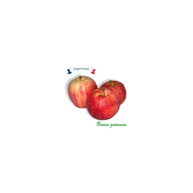Pomme Gala (le Kg)