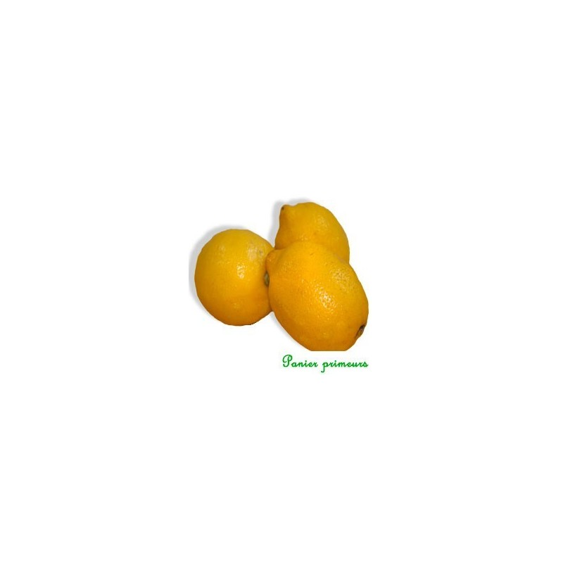 Citrons (le lot de 2)